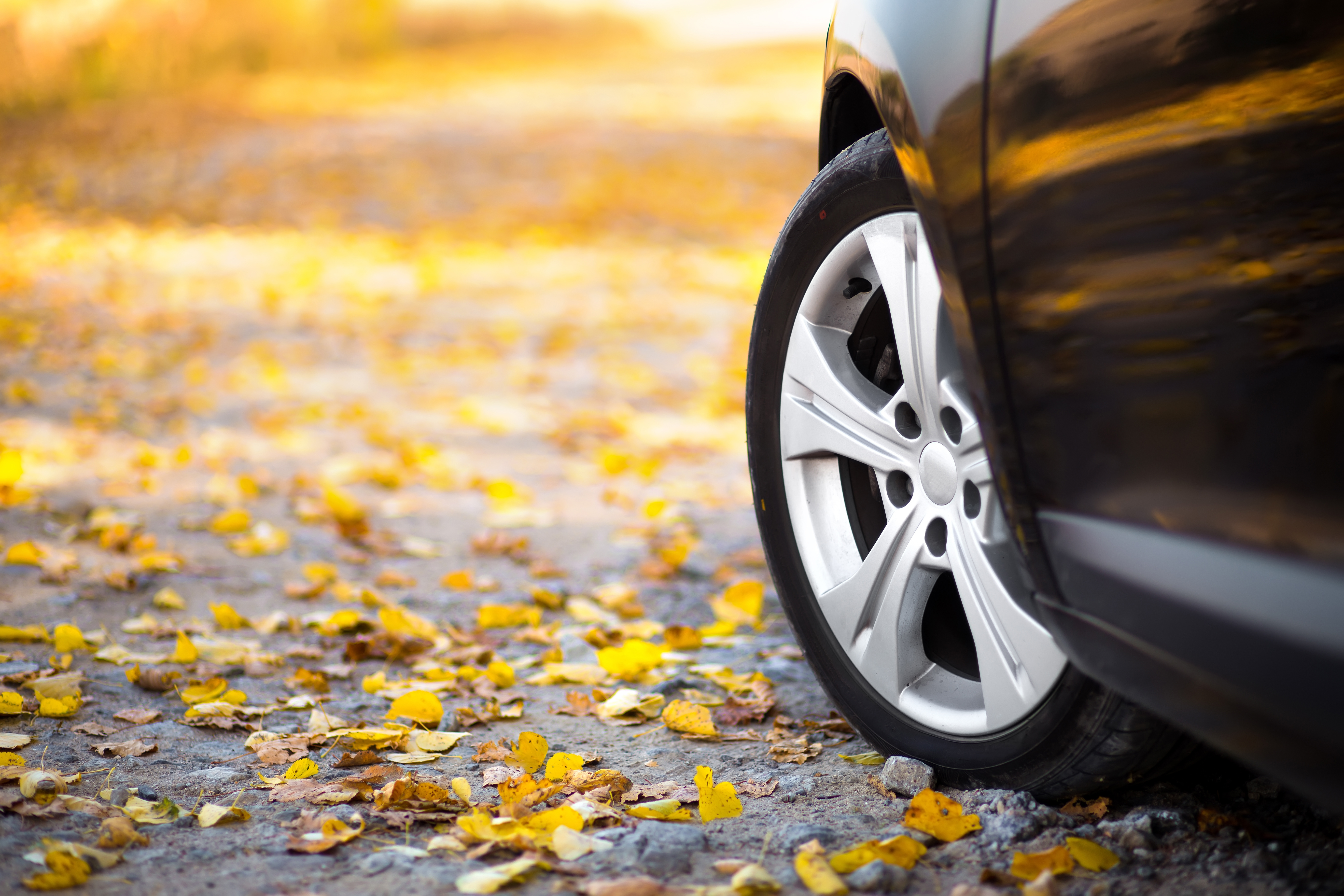 Easy Car Maintenance Tips for the Fall