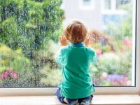 A Homeowner's Guide to Window Maintenance